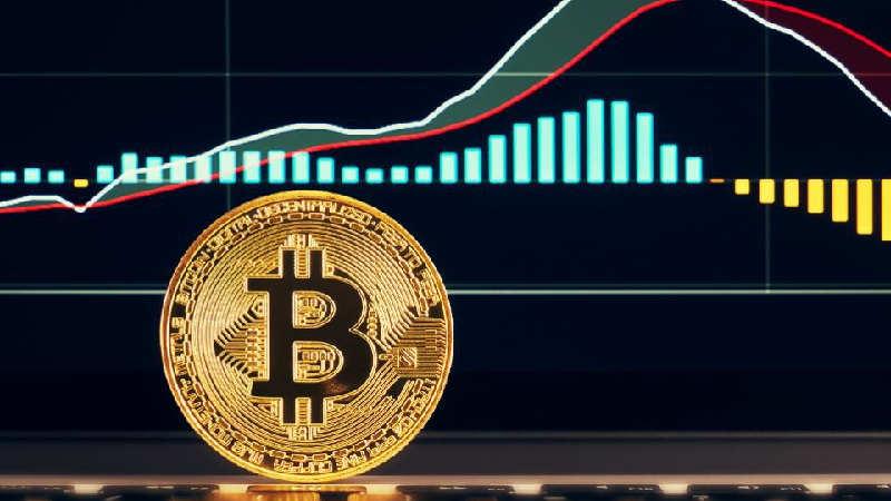 Are Cryptocurrencies A Good Investment?